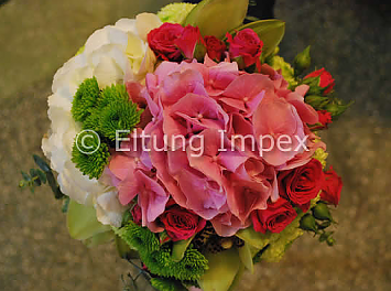 Eltung Flores Nunta Ploiesti